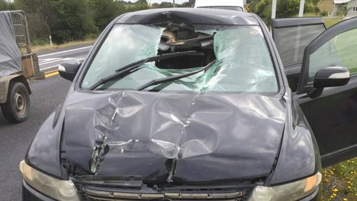 outer image of windscreen after a ladder crashed through it